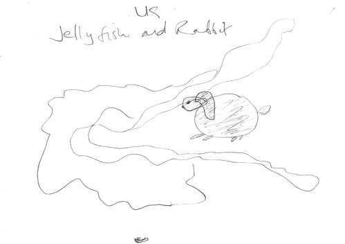 Jellyfish vs Rabbit