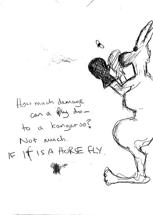Horsefly vs Kangaroo
